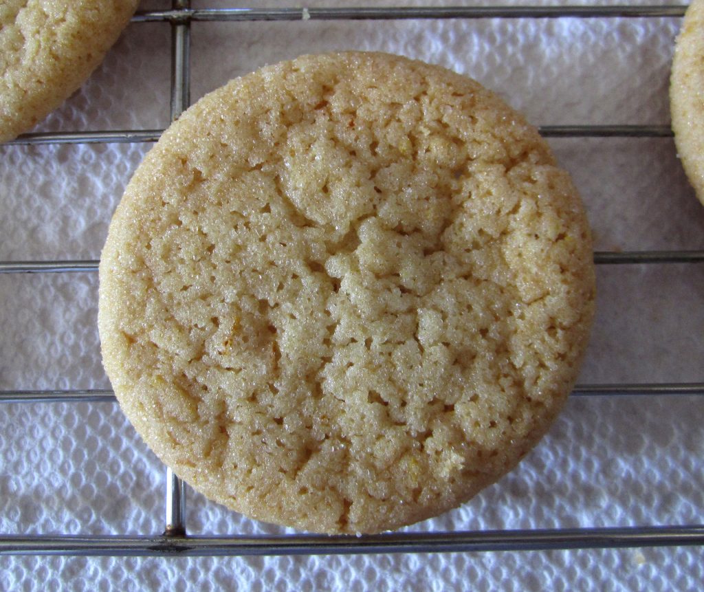 Honey, Orange & Ginger Cookies + Cookies Galore - The Orange Bee