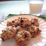 Earthy Oatmeal Cranberry Chocolate Chip Cookies